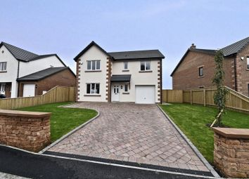 Thumbnail 4 bed detached house for sale in The Mealy Plot 59, Otter Holt, Penrith