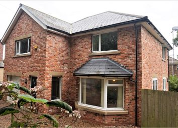 Thumbnail 4 bed detached house for sale in Netherton Lane, Bedlington