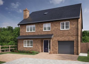 Thumbnail 5 bed detached house for sale in Burnham Grange, Welwyn, Hertfordshire