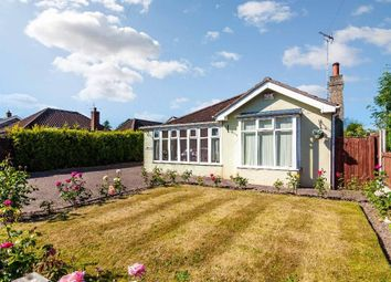Thumbnail 3 bed bungalow for sale in York Road, Shiptonthorpe, York