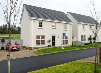 Thumbnail 3 bedroom detached house for sale in Millreagh Avenue, Dundonald, Belfast