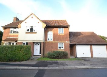 Thumbnail 5 bed detached house for sale in Great Baddow, Chelmsford, Essex