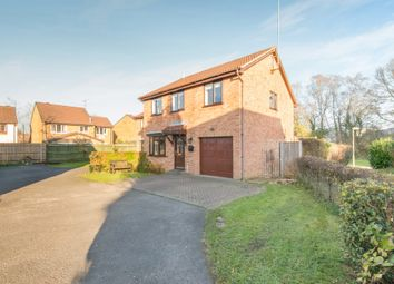 Thumbnail 4 bed detached house for sale in Teviot Road, Chandlers Ford, Eastleigh