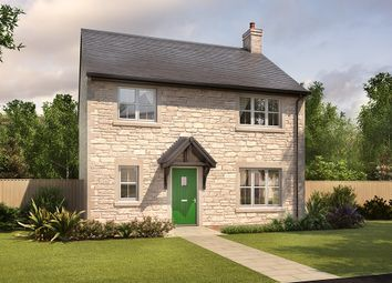 "Thumbnail 3 bed detached house for sale in ""Wallington"" at Mason Avenue, Consett"