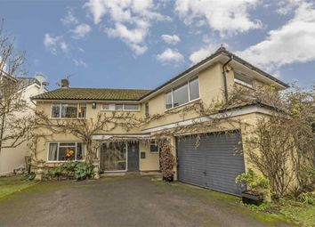 Thumbnail 5 bed property for sale in Church Road, East Molesey