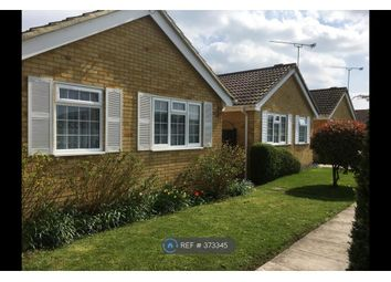 Thumbnail 2 bed bungalow to rent in Brockham, Brockham, Betchworth