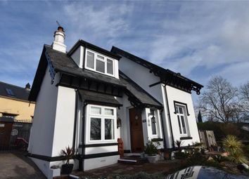 Thumbnail 3 bed detached house for sale in The Yannons, Teignmouth, Devon
