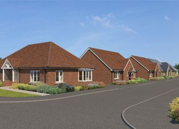 Thumbnail 3 bed detached bungalow for sale in Bannold Road, Waterbeach, Cambridge