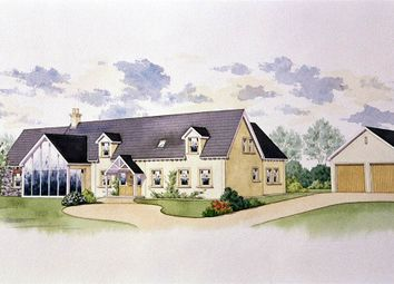 Thumbnail 4 bed detached house for sale in The Brackens, Crossgar, Downpatrick