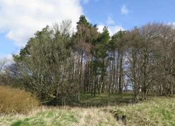 Thumbnail Land for sale in Lands Of Cleghorn Farm, South Lanarkshire