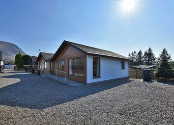 Thumbnail 3 bed detached bungalow for sale in Lochyside, Fort William