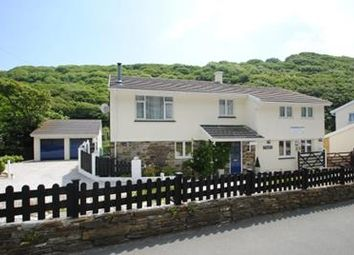 Thumbnail Hotel/guest house for sale in Lower Meadows House, Penally Hill, Boscastle, Cornwall