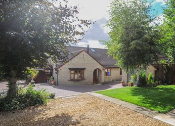 Thumbnail 4 bed detached bungalow for sale in Langer Lane, Chesterfield