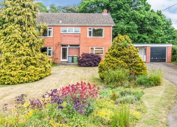 Thumbnail 4 bed detached house for sale in Norwich Road, Tuttington, Norwich