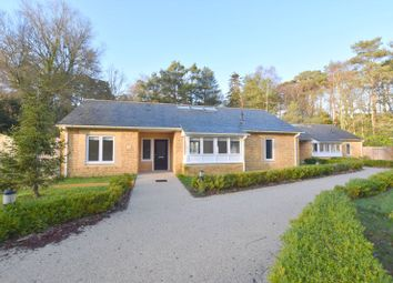 Thumbnail 3 bed detached bungalow to rent in Binnegar, Wareham