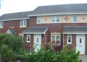 Thumbnail 2 bed terraced house to rent in Cornpoppy Avenue, Monmouth