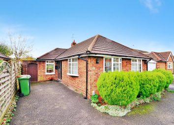 Thumbnail 2 bed detached bungalow to rent in Horley, Surrey