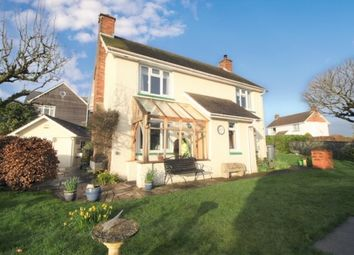 Thumbnail 4 bed detached house for sale in Shillingford St. George, Exeter