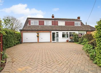 Thumbnail 5 bedroom detached house for sale in High Green, Brooke, Norwich, Norfolk