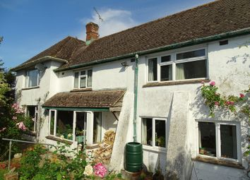 Thumbnail 4 bed detached house for sale in Salisbury Road, Downton, Salisbury