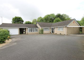 Thumbnail 4 bedroom detached bungalow for sale in South Lodge Court, Old Road, Chesterfield