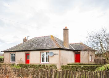 Thumbnail 3 bed bungalow to rent in Arrat Farm, Brechin, Angus
