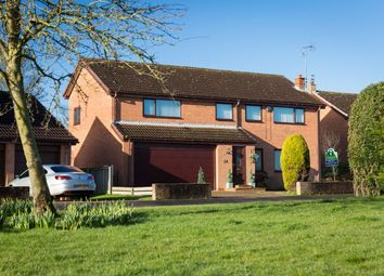 Thumbnail 5 bed detached house for sale in Pasture Close, Skelton, York