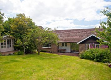 Thumbnail 3 bed detached bungalow for sale in Deanway, Hove