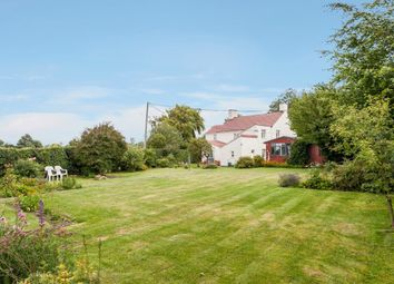 Thumbnail 4 bed cottage for sale in Birds Corner, Shipdham, Thetford