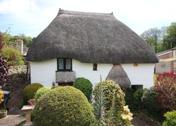 Thumbnail 2 bed cottage for sale in Fore Street, Barton, Torquay