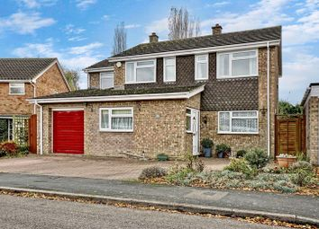 Thumbnail 4 bed detached house for sale in Beachampstead Road, Great Staughton, St. Neots