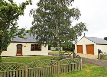 Thumbnail 4 bed detached bungalow for sale in Kingsgate, Gedney, Spalding
