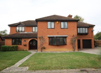 Thumbnail 5 bed detached house for sale in The Paddocks, Werrington