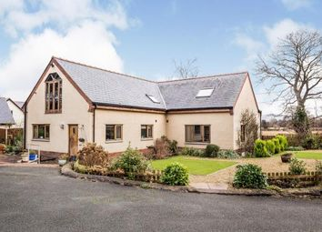 Thumbnail 4 bed detached house for sale in Llanrhaeadr, Denbigh, Denbighshire, Llandir Bach