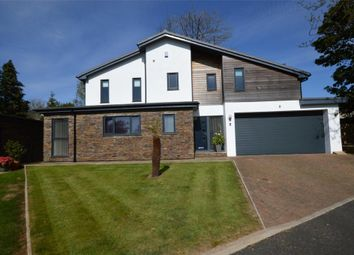 Thumbnail 4 bed detached house for sale in The Folly, Elburton, Plymouth, Devon