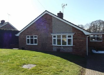 Thumbnail 3 bed detached bungalow to rent in Sixth Avenue, Ross On Wye, Herefordshire