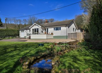 Thumbnail 4 bed detached house for sale in Catbrook, Chepstow