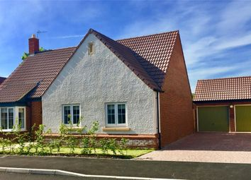 Thumbnail 3 bedroom detached bungalow for sale in Ferryman Close, Twyning, Gloucestershire