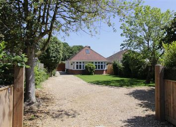 Thumbnail 4 bed bungalow for sale in Bashley Road, New Milton
