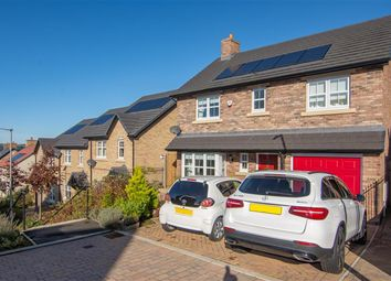 Thumbnail 4 bedroom detached house for sale in Lawther Walk, Consett