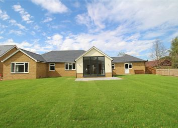 Thumbnail 4 bed detached bungalow for sale in Hutton Grange, North Drive, Hutton, Brentwood, Essex
