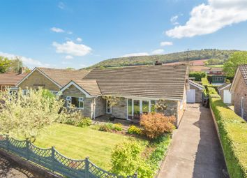 Thumbnail 3 bed detached bungalow for sale in Park Avenue, Talgarth, Brecon
