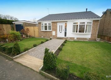 Thumbnail 2 bed detached bungalow for sale in Winchester Drive, Brandon, Durham