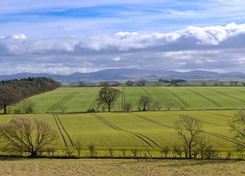 Thumbnail Land for sale in Hardacres Farm, Nr. Eccles, Greenlaw