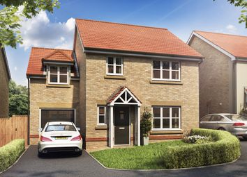 Thumbnail 3 bed detached house for sale in Station Road, Ansford, Castle Cary, Somerset