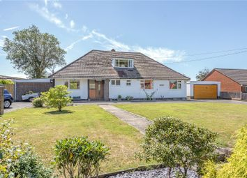 Bramley Lodge, Ditton Road, Polegate, East Sussex BN26. 5 bed detached bungalow for sale
