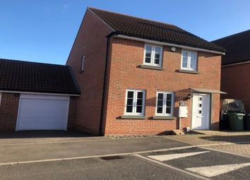 Thumbnail 3 bed detached house to rent in Carter Drive, Basingstoke