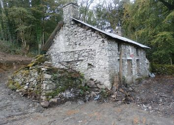 Thumbnail 3 bed property for sale in Llanddewi Brefi, Tregaron