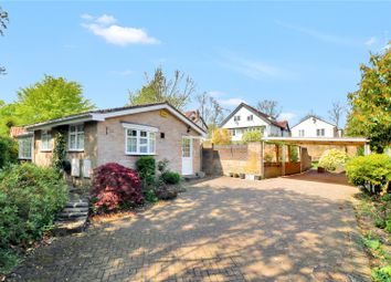 Thumbnail 4 bed detached bungalow for sale in Archer Close, Kings Langley
