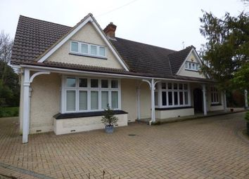 Thumbnail 5 bedroom bungalow for sale in Emerson Park, Hornchurch, Essex
